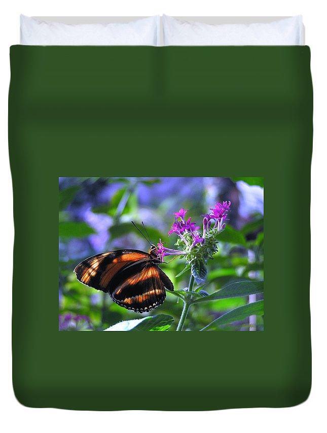 Butterfly Duvet Cover featuring the photograph Sweet Nector by Louise Magno