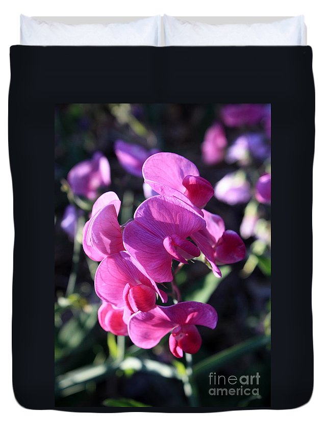 Sweet Pea Duvet Cover featuring the photograph Sweet Pea by Carol Groenen