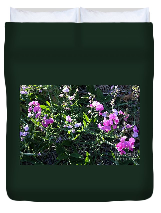Sweet Pea Duvet Cover featuring the photograph Sweet Pea In Tahoe by Carol Groenen