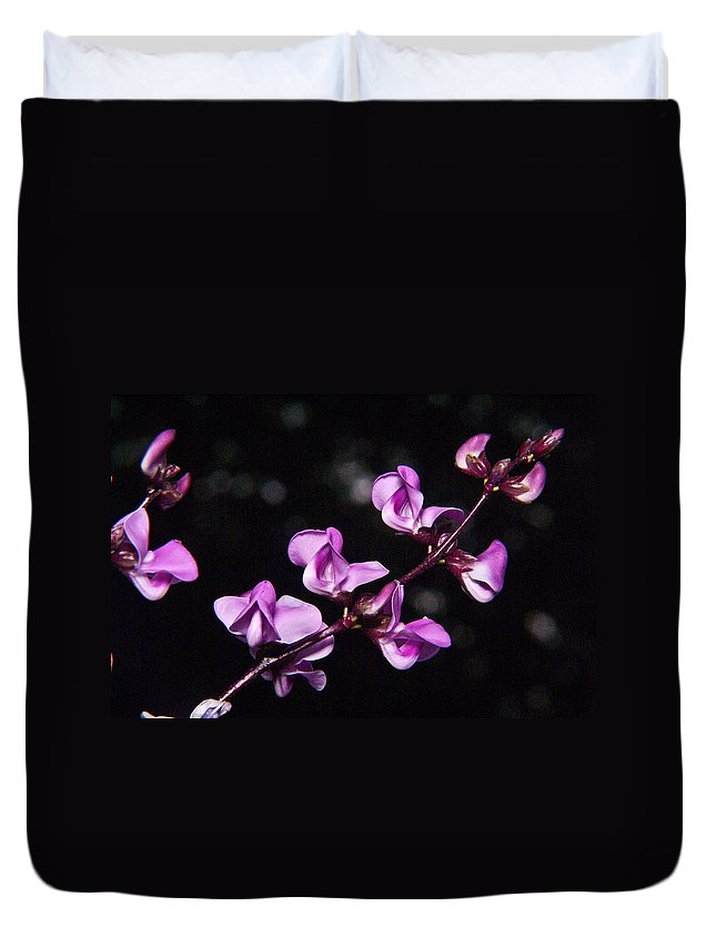 Sweet Duvet Cover featuring the photograph Sweet Pea Morning by Douglas Barnett