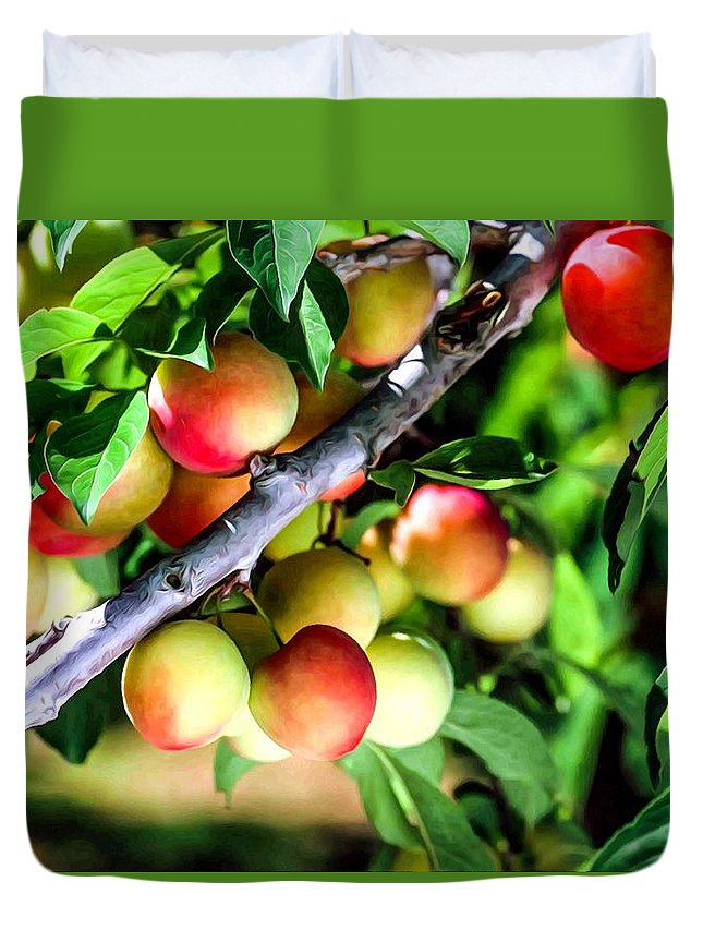 Agriculture Duvet Cover featuring the photograph Sweet Ripe Plum On A Branch by Jeelan Clark