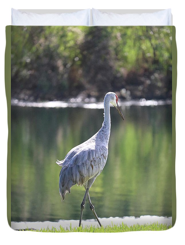 Bird Duvet Cover featuring the photograph Sweet Sandhill By The Pond by Carol Groenen