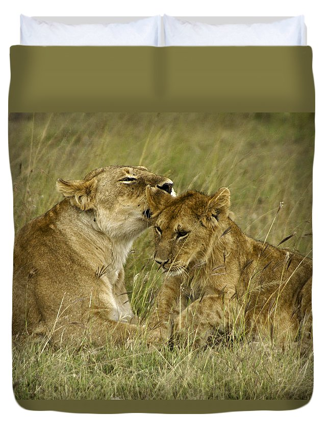 Africa Duvet Cover featuring the photograph Sweet Thing by Michele Burgess