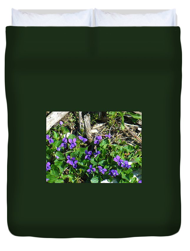 Nature Duvet Cover featuring the photograph Sweet Violets by Peggy King