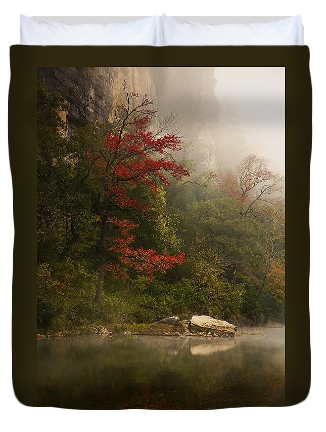 Sweetgum In The Mist Duvet Cover featuring the photograph Sweetgum In The Mist At Steel Creek by Michael Dougherty