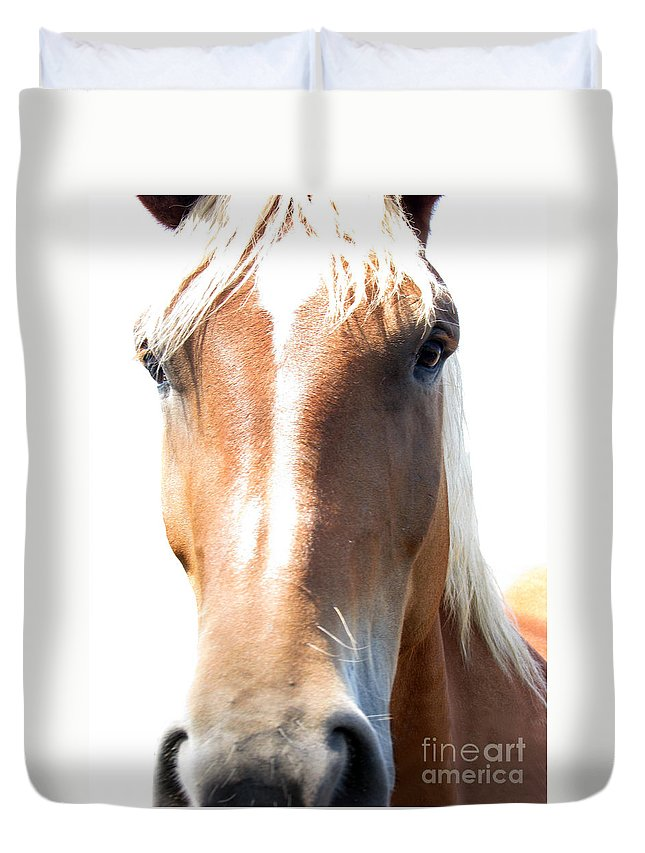 Horse Duvet Cover featuring the photograph Sweetie by Amanda Barcon