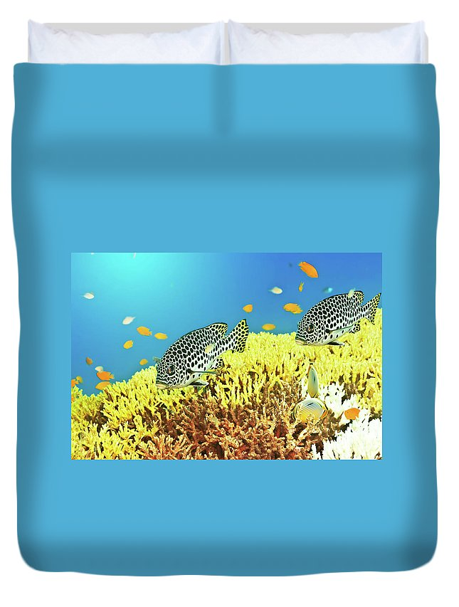 Sweetlips Duvet Cover featuring the photograph Sweetlips by MotHaiBaPhoto Prints