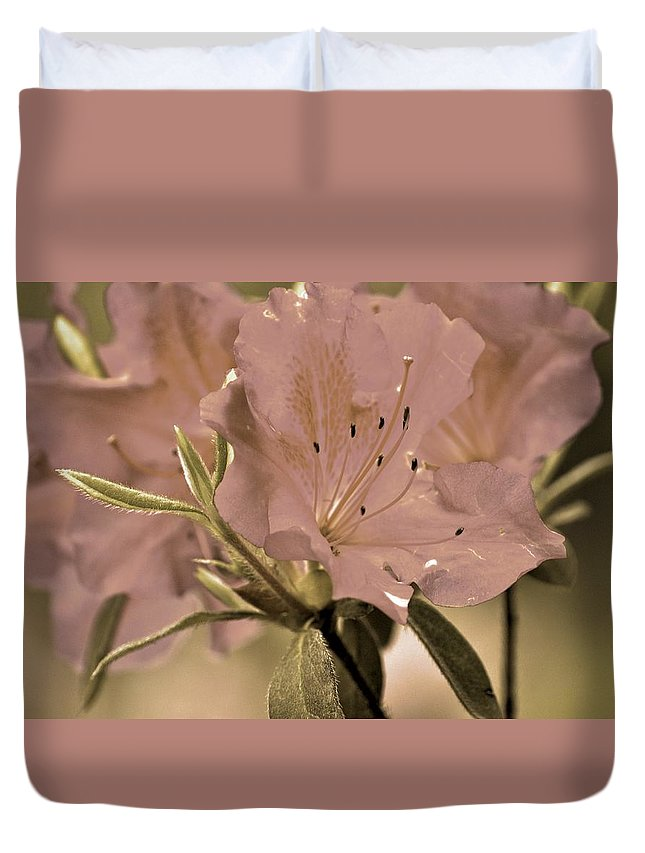 Azaleas Duvet Cover featuring the photograph Sweetness by Donna Shahan