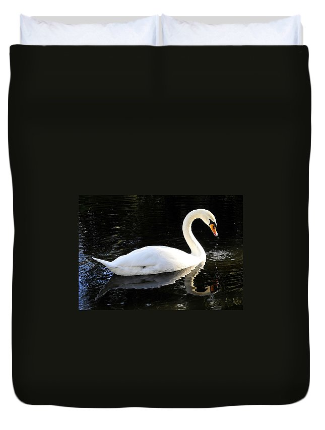 Swan Duvet Cover featuring the photograph Swimming Swan by David Lee Thompson