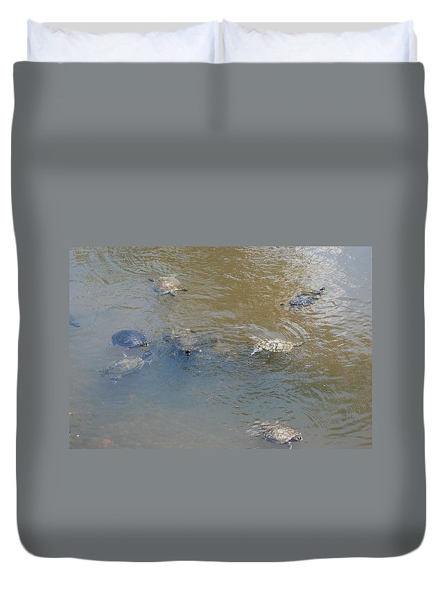 Water Duvet Cover featuring the photograph Swimming Turtles by Rob Hans