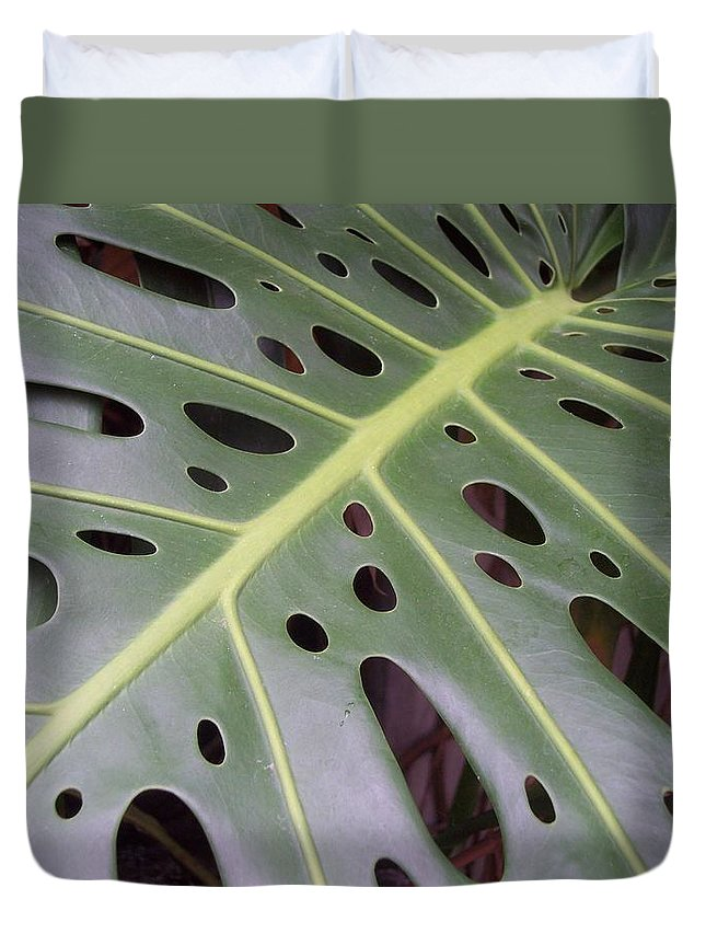 Swiss Cheese Plant Duvet Cover featuring the photograph Swiss Cheese Plant by Michelle Miron-Rebbe
