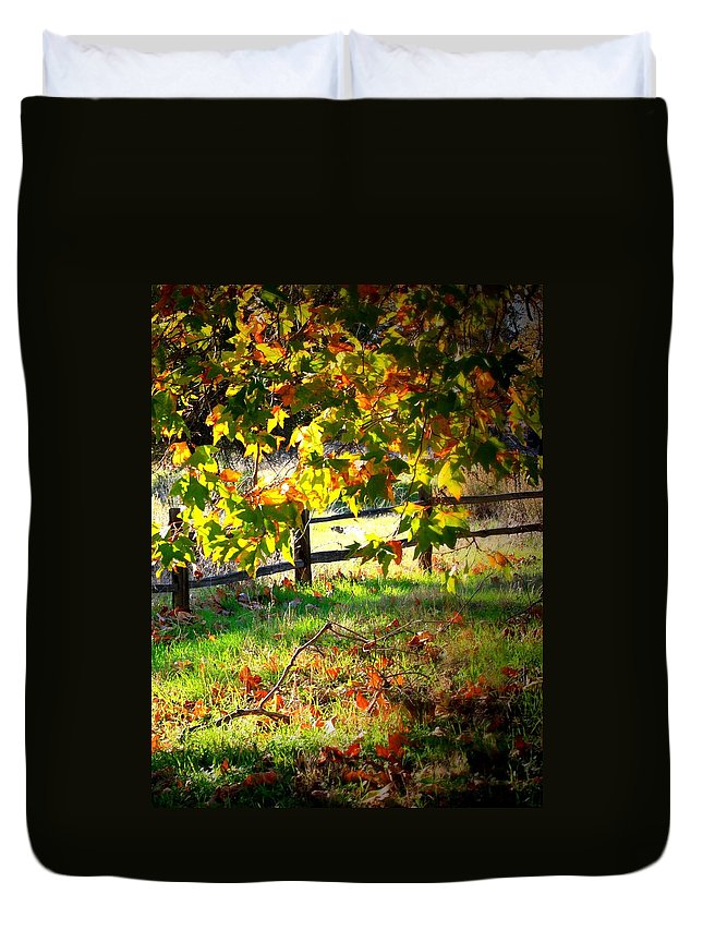 Fence Duvet Cover featuring the photograph Sycamore Grove Fence 2 by Carol Groenen