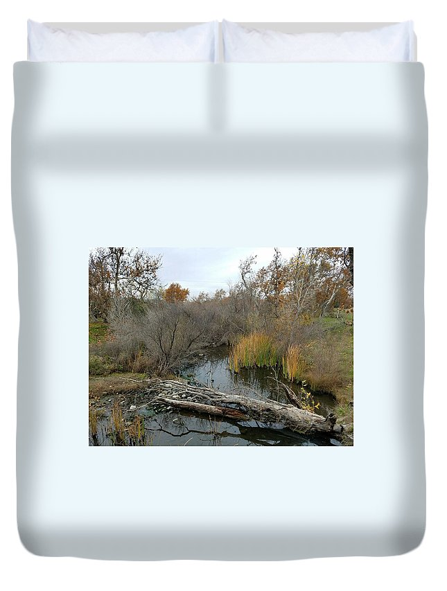 Livermore Duvet Cover featuring the photograph Sycamore Grove by Rosanne Compitello