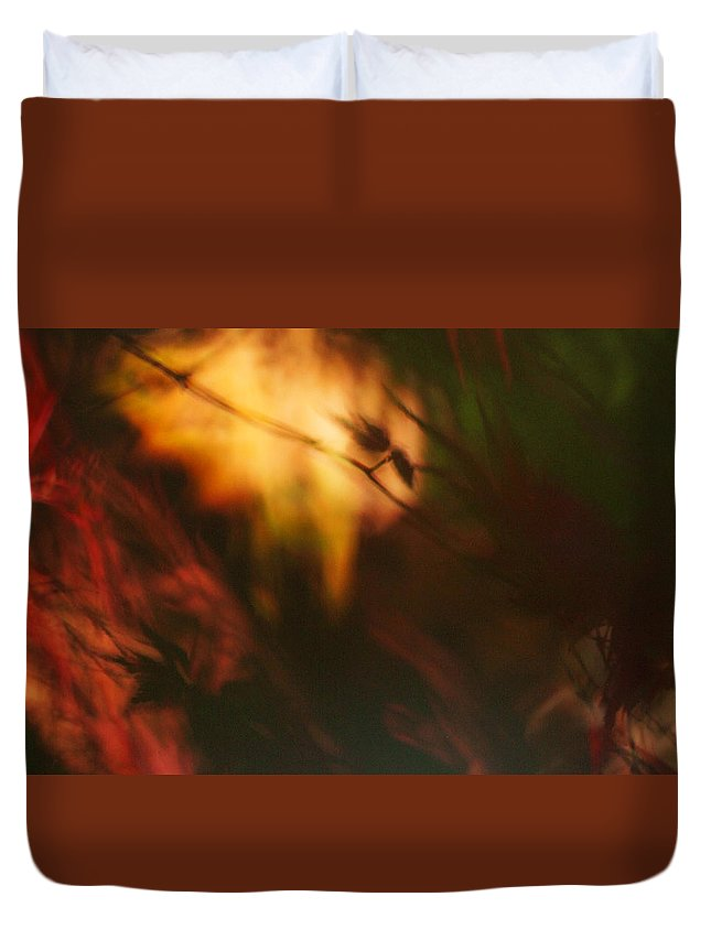Leaves. Leaf Duvet Cover featuring the photograph Synonymous Light by Gary Bartoloni