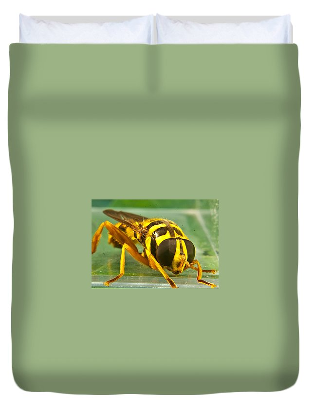 Syrphid Duvet Cover featuring the photograph Syrphid Eye To Eye by Douglas Barnett