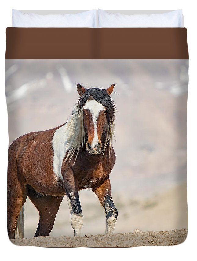 Horse Duvet Cover featuring the photograph T Square by Kent Keller
