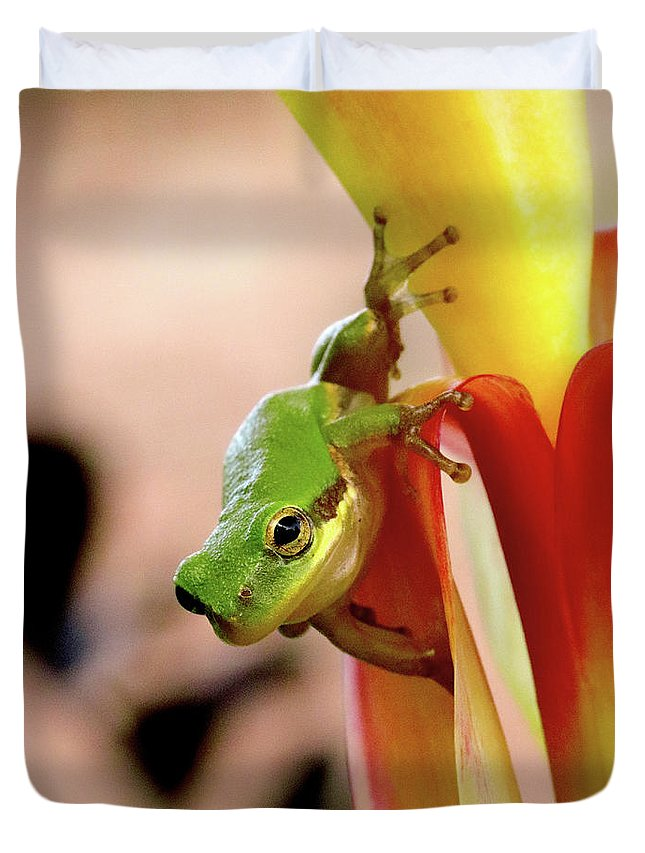 Frog Duvet Cover featuring the photograph Take That Leap by April Zaidi