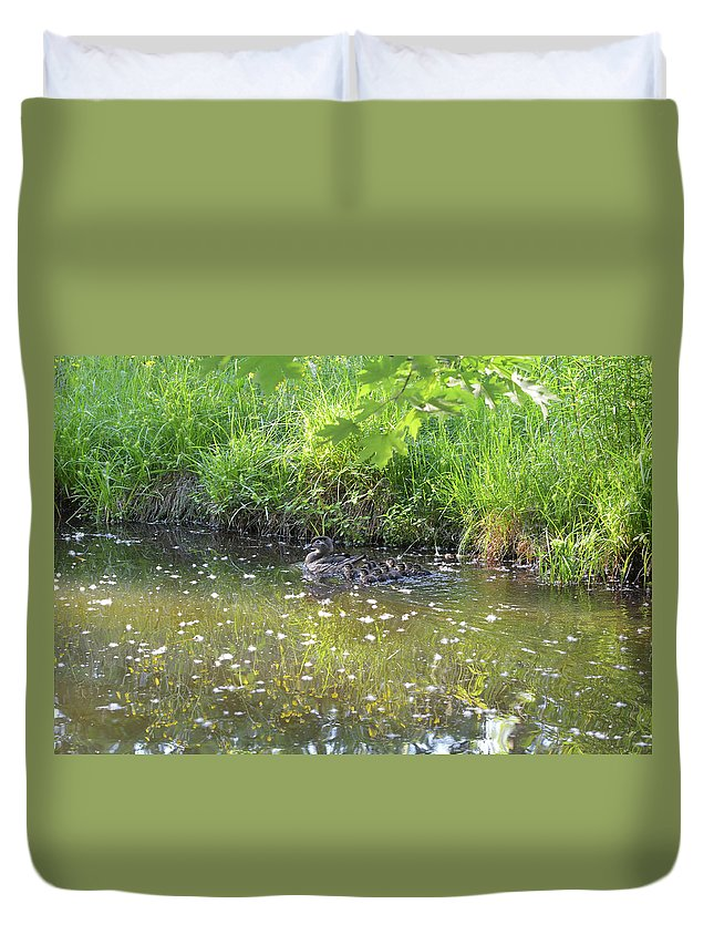 Wood Duck Duvet Cover featuring the photograph Taking A Stroll With Mom Troughs Floral Reflections by Asbed Iskedjian