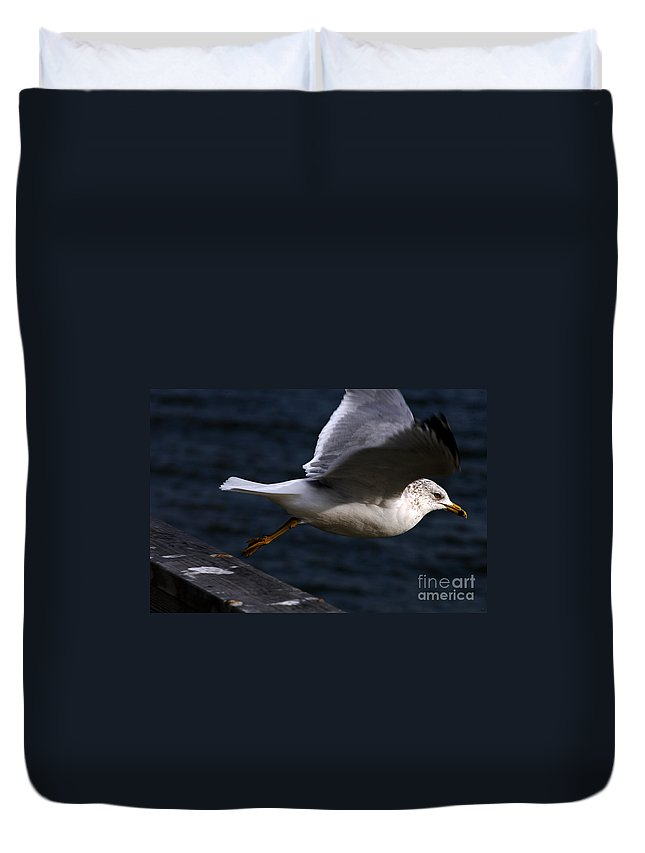 Clay Duvet Cover featuring the photograph Taking Flight by Clayton Bruster