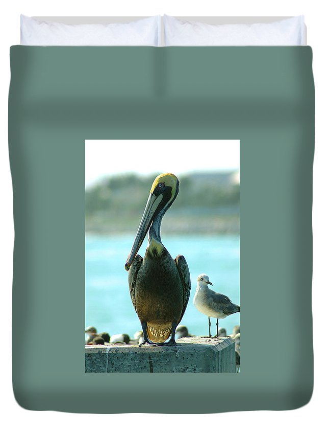 Pelican Duvet Cover featuring the photograph Tall Pelican by Susanne Van Hulst