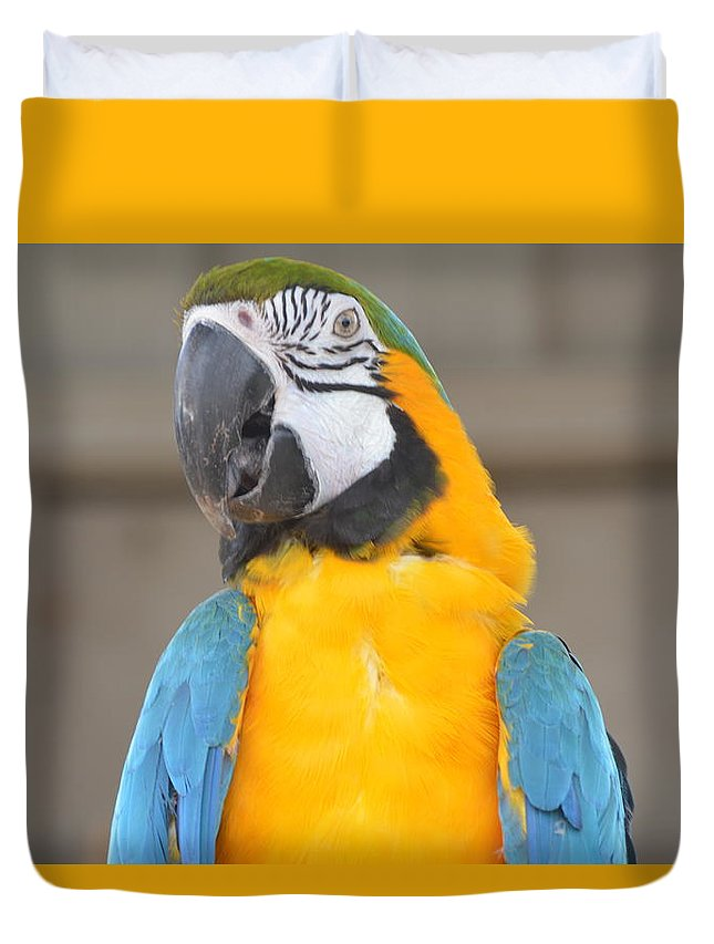 Animal Duvet Cover featuring the photograph Tanganyika 0087 by James Conklin