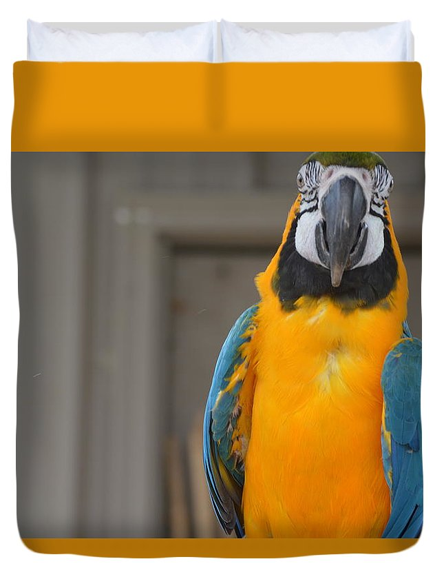 Animal Duvet Cover featuring the photograph Tanganyika 0088 by James Conklin