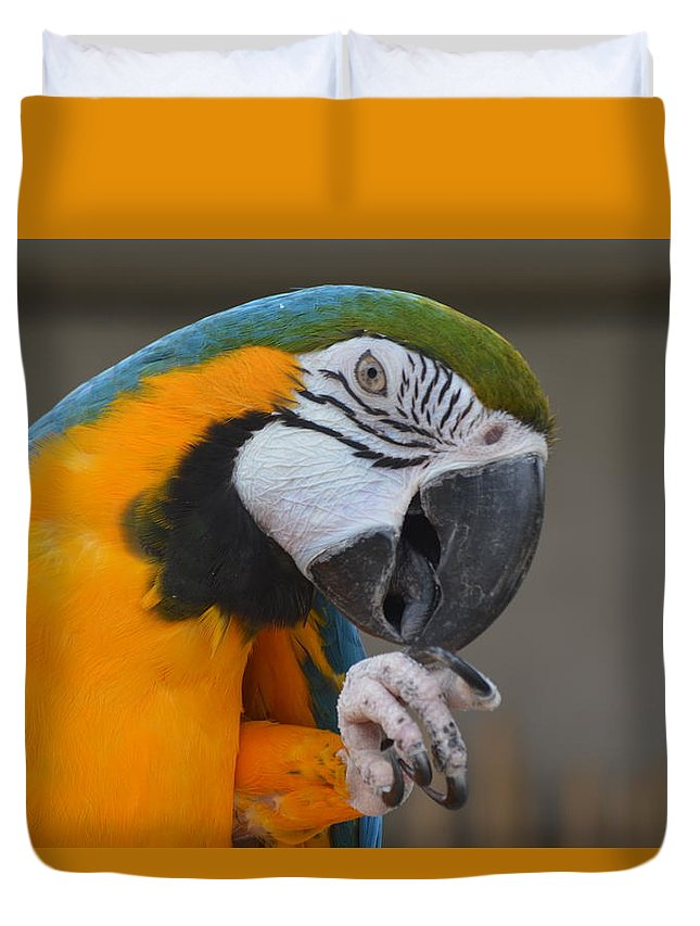 Animal Duvet Cover featuring the photograph Tanganyika 0090 by James Conklin