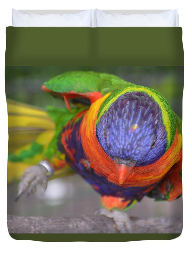 Animal Duvet Cover featuring the photograph Tanganyika 0102 by James Conklin
