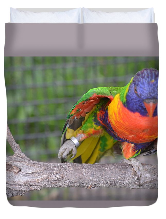 Animal Duvet Cover featuring the photograph Tanganyika 0103 by James Conklin