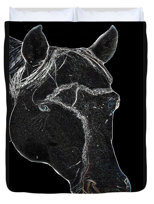 Paint Horse Stallion Black And White Colt Animal Farm Ranch Duvet Cover featuring the photograph Tango by Andrea Lawrence