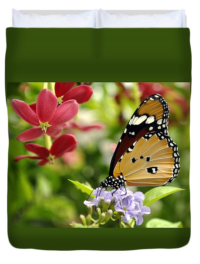Butterfly Duvet Cover featuring the photograph Tasting Colors by Bliss Of Art