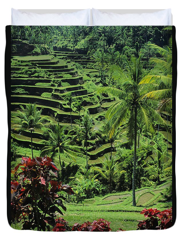 Agriculture Duvet Cover featuring the photograph Tegalalang, Bali by William Waterfall - Printscapes