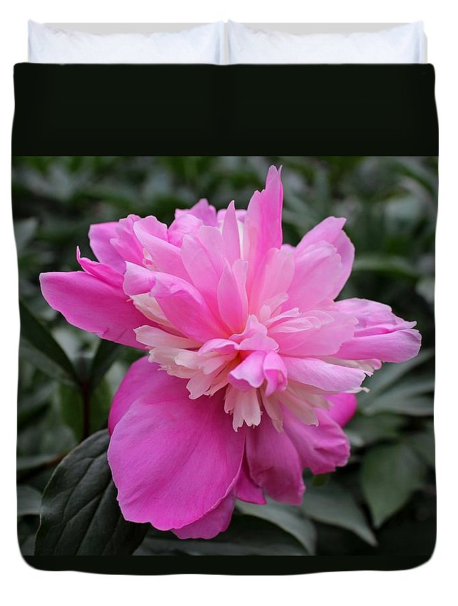Peony Duvet Cover featuring the photograph Tender Mercies by Michiale Schneider