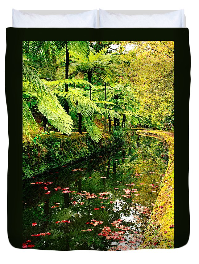 Azores Duvet Cover featuring the photograph Terra Nostra Park by Gaspar Avila