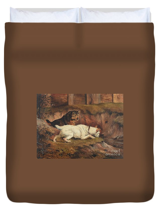Alfred Wheeler (1851-1932) Duvet Cover featuring the painting Terriers Ratting by MotionAge Designs