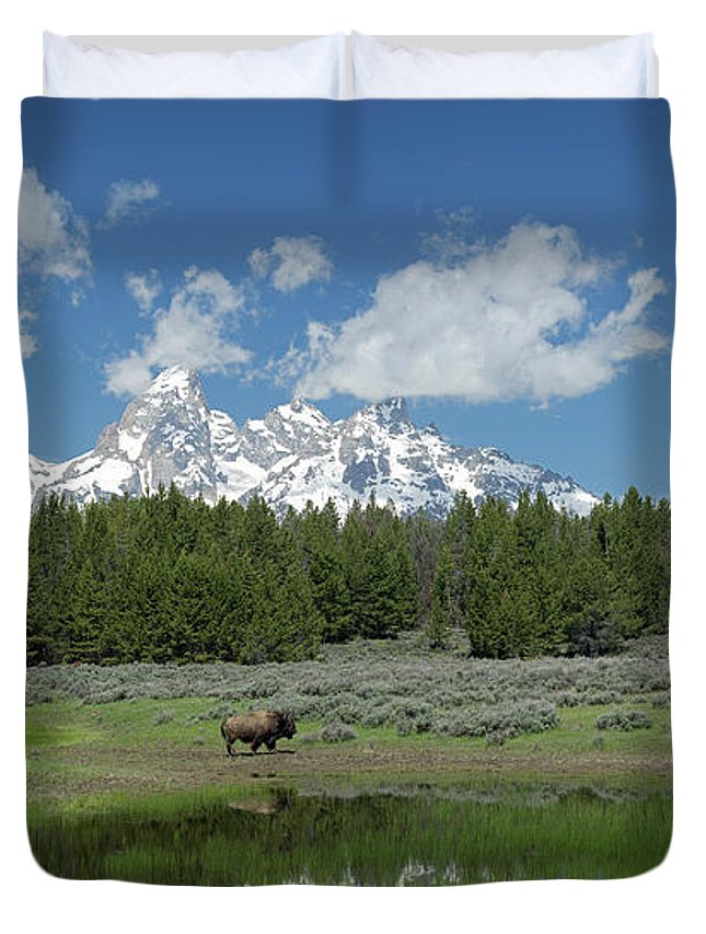 Tetons Duvet Cover featuring the photograph Teton Reflection With Buffalo by George Sanquist