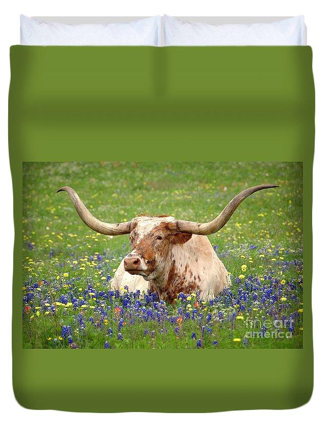 Texas Longhorn In Bluebonnets Duvet Cover featuring the photograph Texas Longhorn in Bluebonnets by Jon Holiday