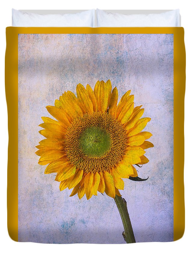 Sunflower Duvet Cover featuring the photograph Textured Sunflower by Garry Gay