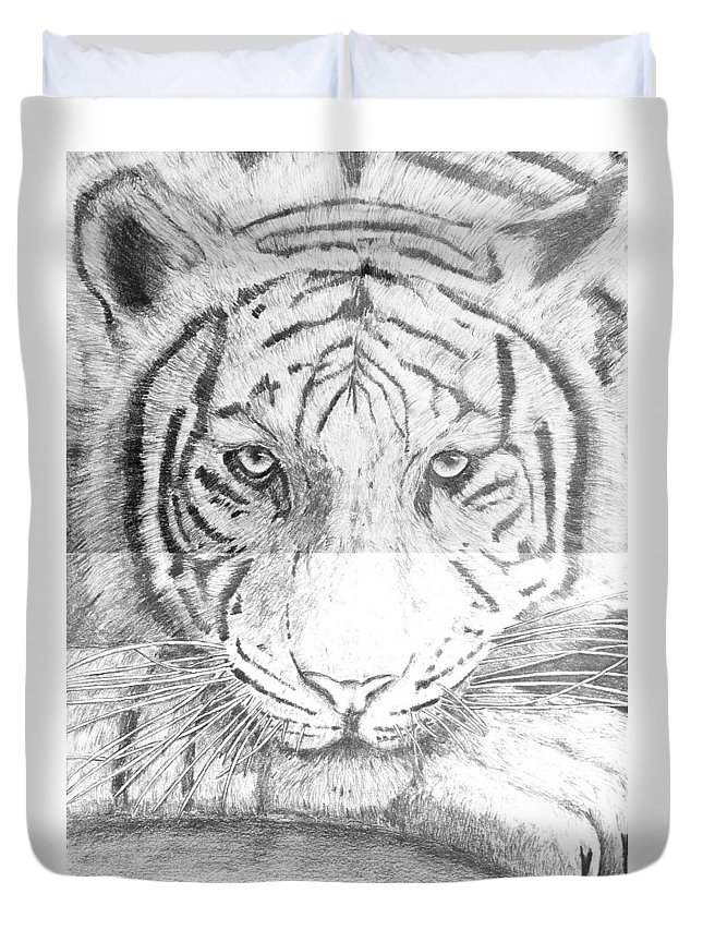 Tiger Duvet Cover featuring the drawing The Amur Tiger by Alexander Ivanov