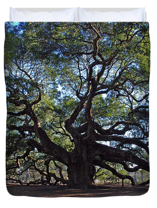Photography Duvet Cover featuring the photograph The Angel Oak In Spring by Susanne Van Hulst