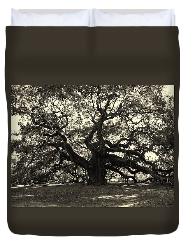 Angel Oak Duvet Cover featuring the photograph The Angel Oak by Susanne Van Hulst