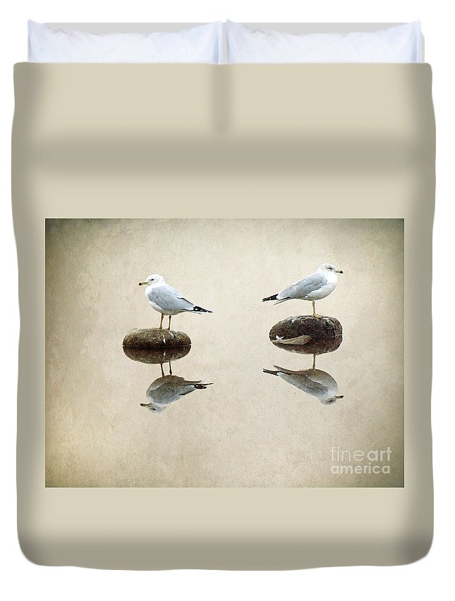 Seagulls Duvet Cover featuring the photograph The Argument by Tara Turner