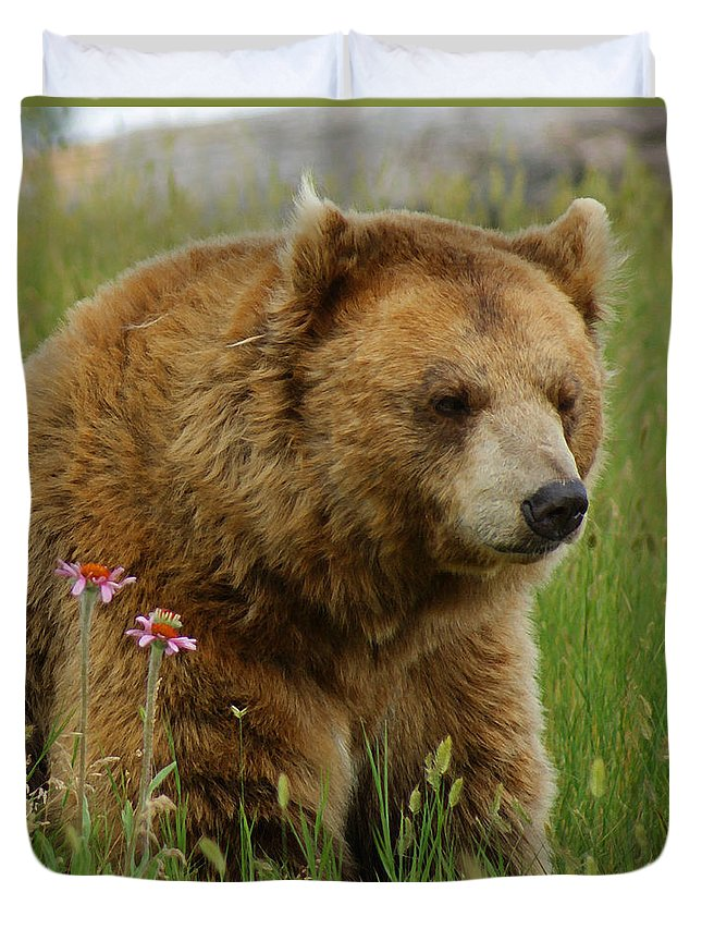 Bear Duvet Cover featuring the mixed media The Bear 1 Dry Brushed by Ernie Echols