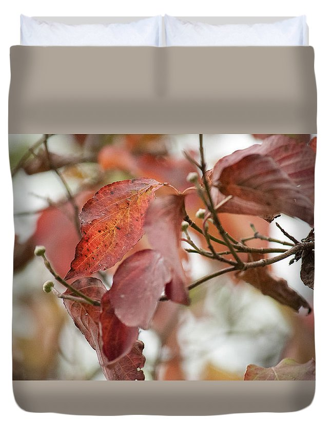 Leaves Turning Duvet Cover featuring the photograph The Beauty Of Fall by Tim Atchley