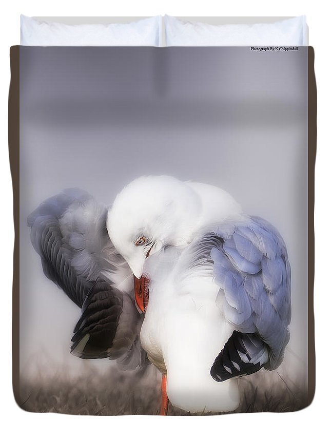 Seagulls Duvet Cover featuring the photograph The Beauty Of Nature 00002 by Kevin Chippindall
