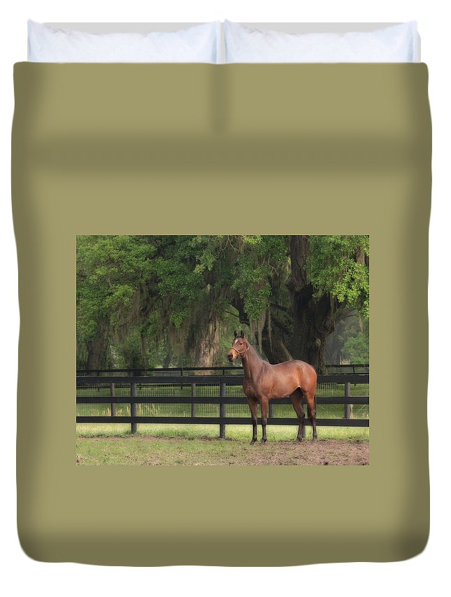 Thoroughbred Duvet Cover featuring the photograph The Beauty Of The Thoroughbred by Eleszabeth McNeel
