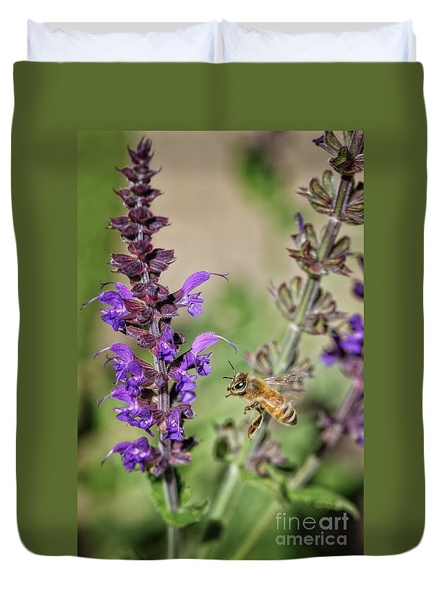 Lavender Duvet Cover featuring the photograph The Bee And The Laveder by Mitch Johanson
