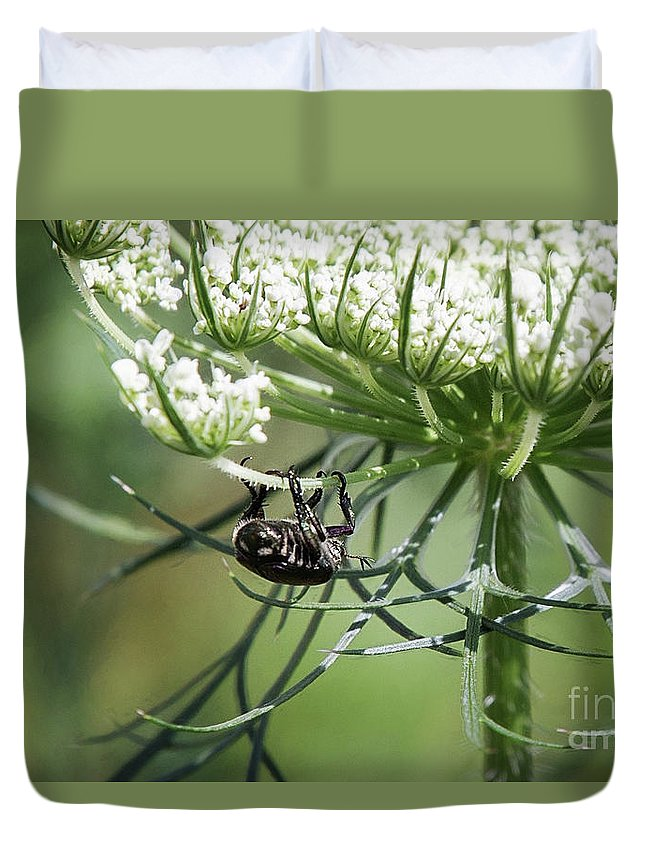 Flower Duvet Cover featuring the photograph The Beetle Acrobat by Sharon McConnell