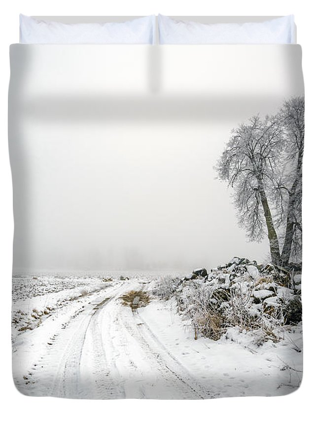 Acre Duvet Cover featuring the photograph The Birch by Ludwig Riml