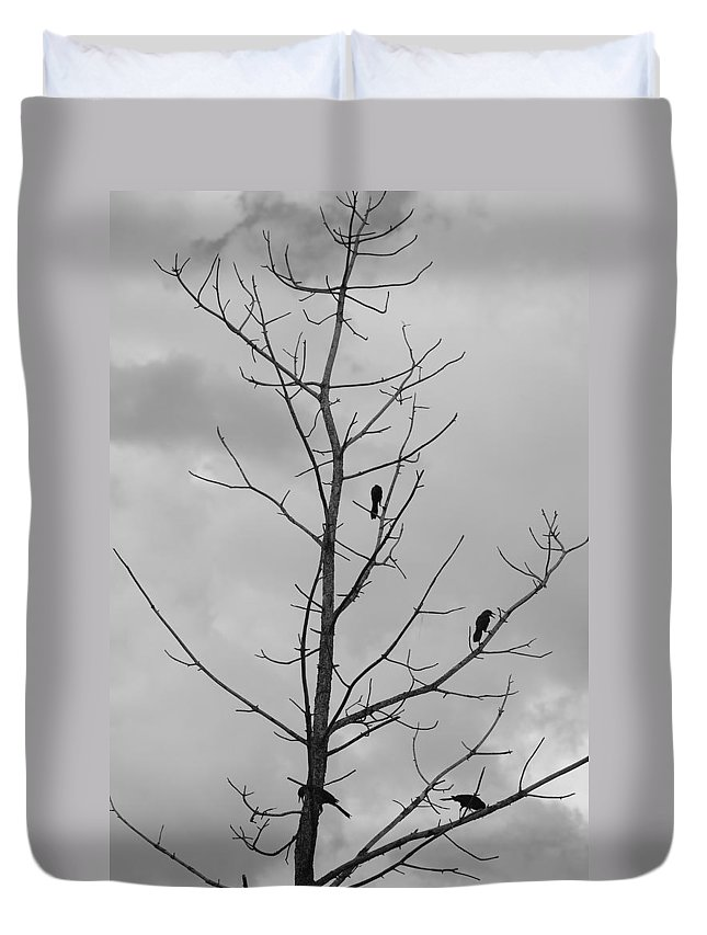 Tree Duvet Cover featuring the photograph The Birds by Rob Hans